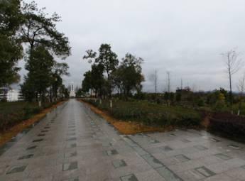 南丰县醒侬公园