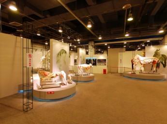 2011北京生命奥秘展览(一)