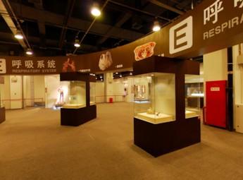 2011北京生命奥秘展览(二)