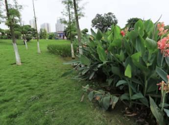 广西南宁市花卉公园
