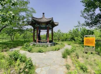 北京安定御林古桑园