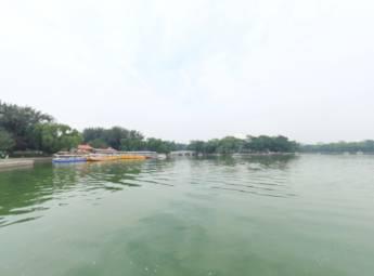 北京龙潭公园夏季美景