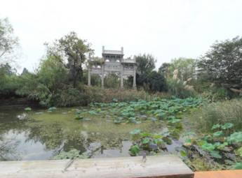杭州西溪湿地(二)