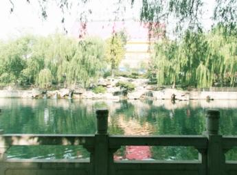 济南护城河沿岸泉眼