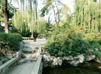 趵突泉公园