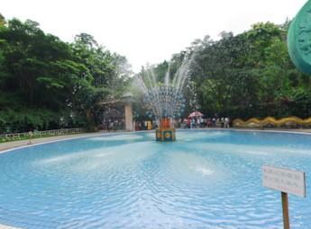 云南西双版纳热带雨林森林公园