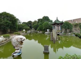 【专辑】温州龙湾区动景赏析