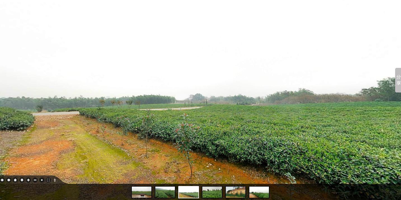 北京一茗茶业