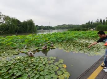 上海闵行体育公园