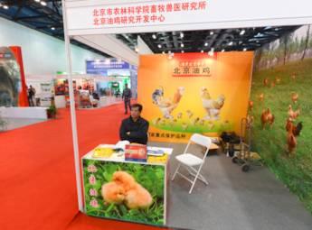2013年中国(北京)国际现代畜牧展览会