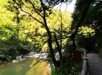 湖南株洲神农谷