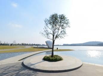 上海月湖雕塑公園