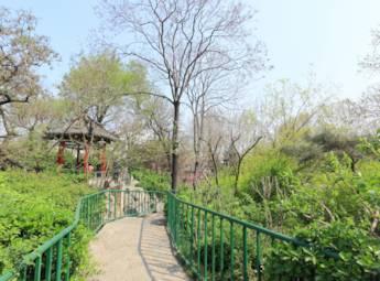 济南中山公园