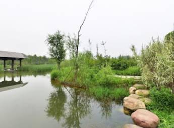 长沙梅溪湖湿地