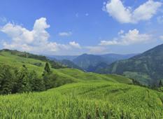 遊桂林山水 品味自然本性的意韵