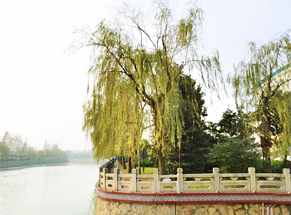 【VR】小淮河和京杭大运河