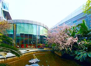 【VR】成都川投国际酒店