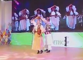 第20届文博会罗马尼亚表演