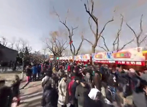 2015春節龍潭湖廟會