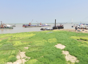 【VR】岳阳洞庭湖湿地-老码头