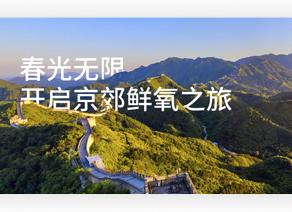 春光无限 开启京郊鲜氧之旅
