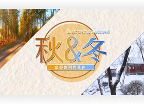 初冬京郊赏别样景色,周末就出发